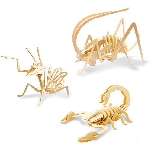 Georgie Porgy 3d Puzzle Di Legno Modello Collezione Di Modelli Animali Traffico Woodcraft Costruzione Impostato Bambini Giocattoli Per Ragazzi E Ragazze Eta 5 3 Pezzo Cricket Mantis Scorpion 0