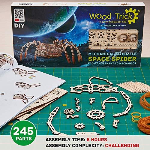 Wood Trick Puzzle 42 0 2